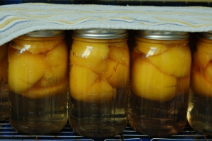 peaches in light syrup