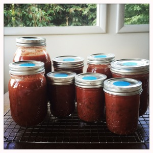 how to use canned tomato sauce
