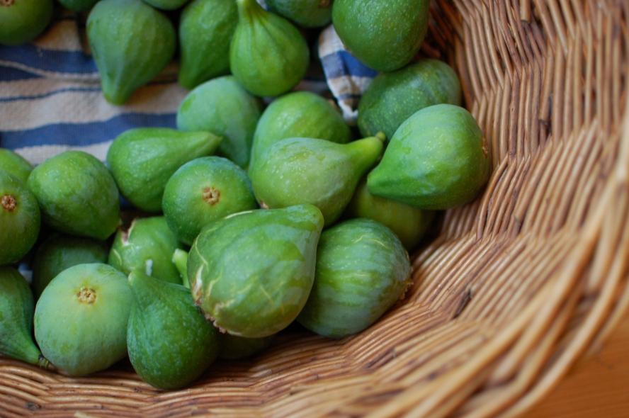 figs aplenty
